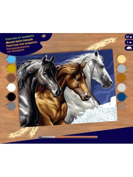 Набір для творчості Sequin Art PAINTING BY NUMBERS SENIOR Дикі коні SA1040